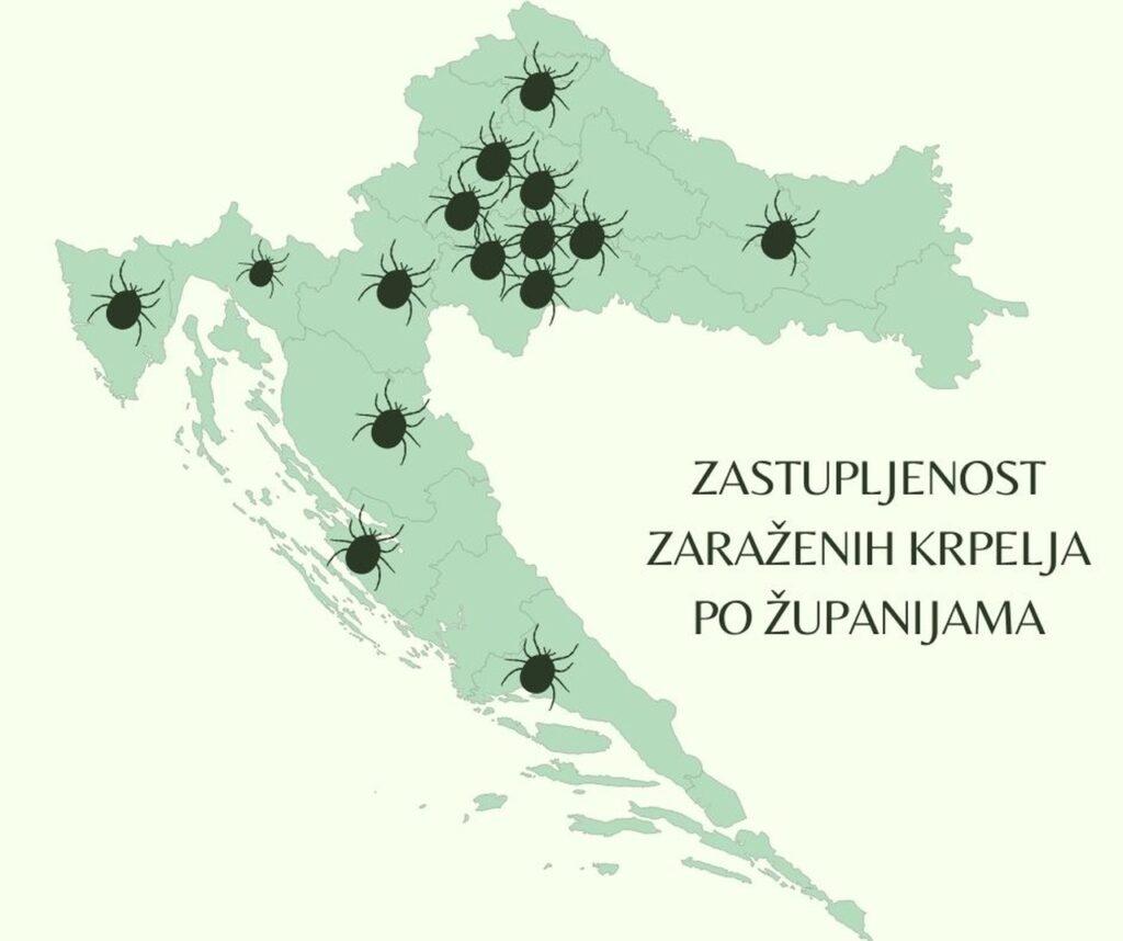 zastupljenost zarazenih krpelja po zupanijama u Hrvatskoj